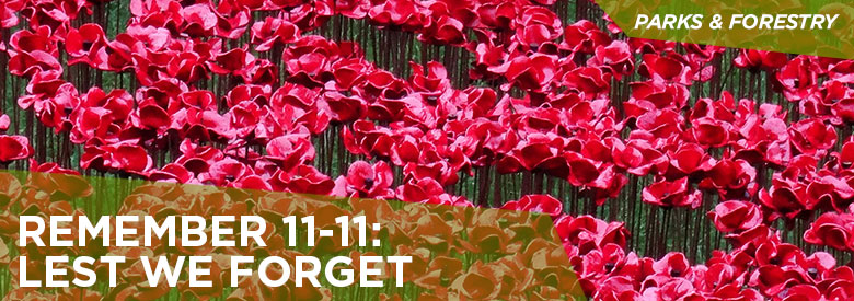 City of Mississauga Parks and Forestry - Remember 11-11