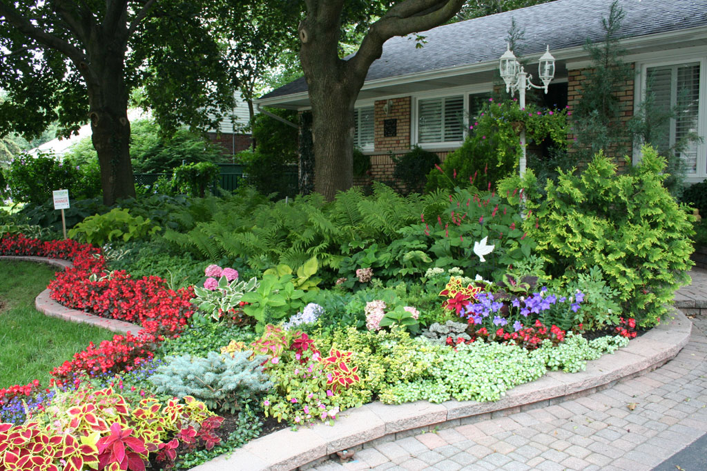 Mississaugaca Things To Do Winners Garden Gallery Residential - shade garden design ontario