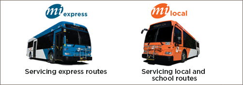 MiExpress and MiLocal Buses