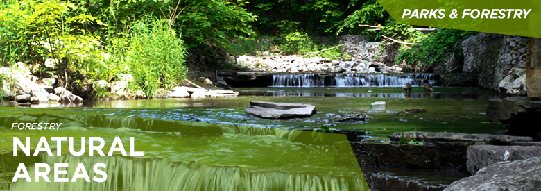 City of Mississauga Parks and Forestry - Natural Areas