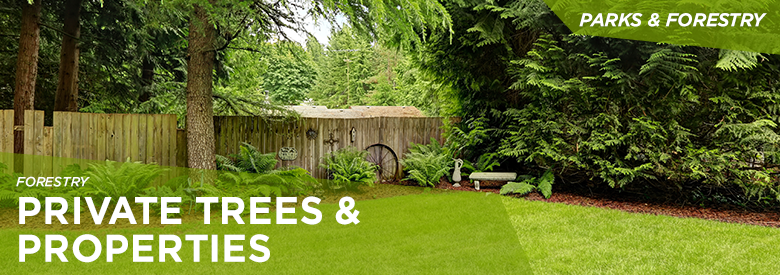 City of Mississauga Parks and Forestry - Private Trees & Properties