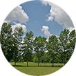 Meadowvale Conservation Park